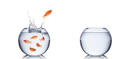 Understanding attrition and ways to address it