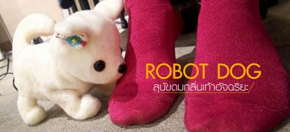 Robot Dog สุนัขดมกลิ่นเท้าอัจฉริยะ