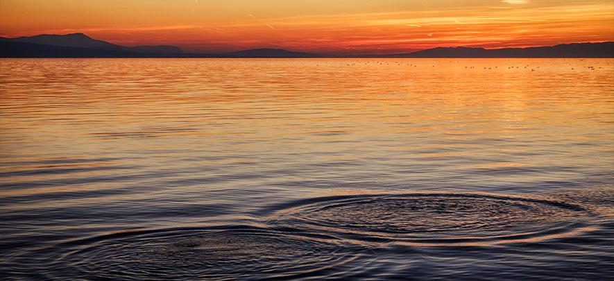 Your enterprise is not a drop in the ocean, it embodies the ocean itself
