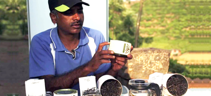 Tryst with tea - Reimagining Nilgiri tea & facilitating sustainable living in the region