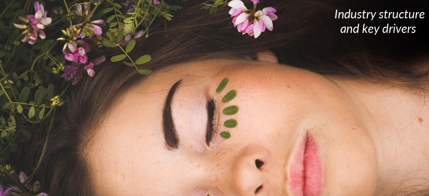Beauty and wellness industry: Industry structure and key drivers