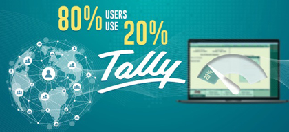 80% of users use 20% Tally