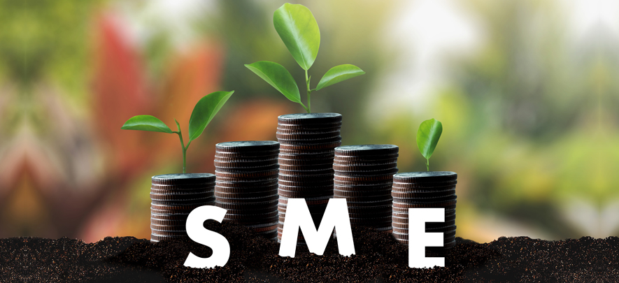 Expert Committee Report on Micro, Small and Medium Enterprises (MSMEs) June 2019: Registrations to avail schemes