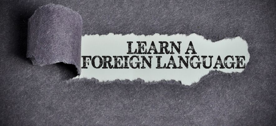 Why must foreign languages be taught in primary schools?