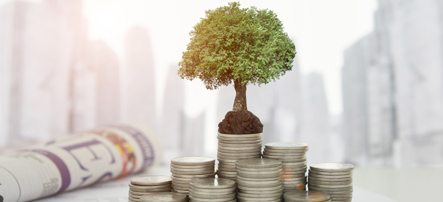 Precursor to fund raise: Assessment of business environment and unit economics