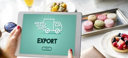 How should I export food products to the USA from India?