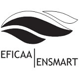 EFICAA ENSMART SOLUTIONS PRIVATE LIMITED