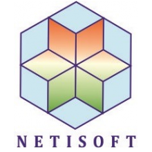 Netisoft Consultants Private Limited