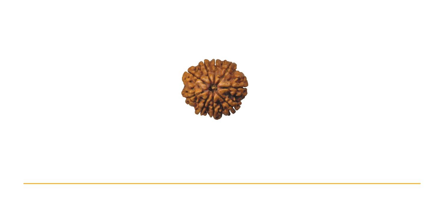 Rudrakrupa