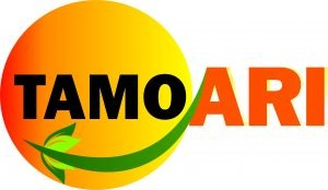 TAMO ARI ENERGY AUDIT & MANAGEMENT SYSTEMS PVT. LTD.