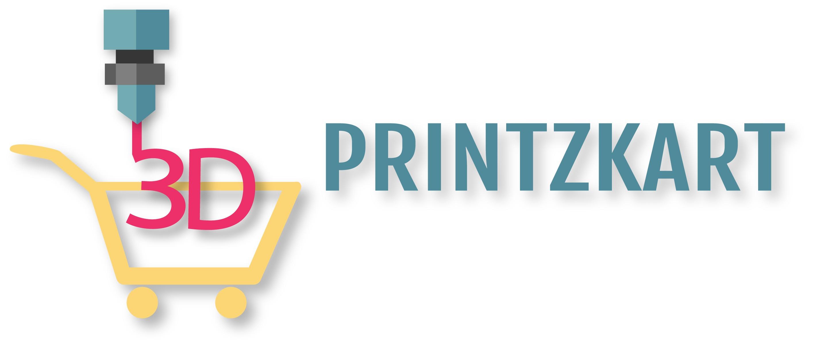 3D PRINTZKART
